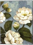 Camellias Fine-Art Print