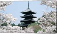 Cherry Blossoms Ninna-Ji Temple Grounds Kyoto Japan Fine-Art Print