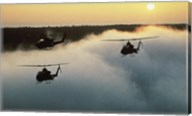 AH-16 (Cobras) Attack Helicopters Fine-Art Print