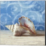 Gifts from the Sea IV Fine-Art Print