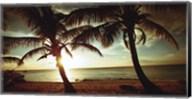Bimini Sunset Fine-Art Print