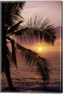 Kohala Coast at sunset, The Big Island, Hawaii, USA Fine-Art Print