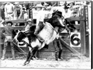 Side profile of a cowboy riding a bull at a rodeo Fine-Art Print