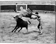 Matador fighting with a bull Fine-Art Print