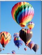 Cluster of Hot Air Balloons Fine-Art Print