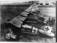 Albatos D.III  Squadron Fine-Art Print