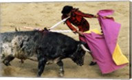 High angle view of a matador fighting with a bull, Spain Fine-Art Print