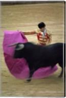 A matador and a bull at a Bullfight, Spain Fine-Art Print