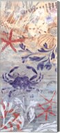 Floral Frenzy Coastal VII Fine-Art Print