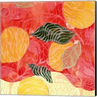 Citrus Limon II (SM.) Fine-Art Print