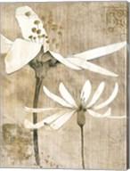 Pencil Floral II Fine-Art Print