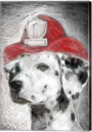 Firefighter Dalmation Fine-Art Print