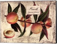 Fresco Fruit IX Fine-Art Print
