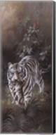 White Tigers Fine-Art Print