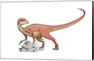 Abrictosaurus Fine-Art Print