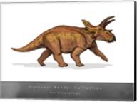 Anchiceratops Fine-Art Print