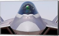 F-22 Raptor Fine-Art Print