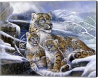 Snow Leopards Fine-Art Print