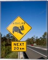 Koala sign on the road, Queensland, Australia Fine-Art Print