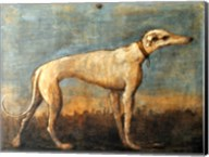 Greyhound, Giandomenico Tiepolo Fine-Art Print