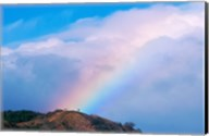Rainbow at Monteverde Cloud Forest Reserve, Costa Rica Fine-Art Print