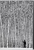 Man and Bamboo Fine-Art Print