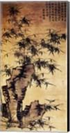 Xia Chang-Bamboo and Stone Fine-Art Print