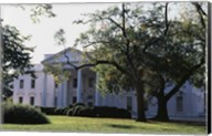 Trees in front of a government building, White House, Washington DC, USA Fine-Art Print