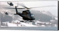Norwegian military Bell 412SP helicopters Fine-Art Print