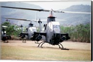 Three AH-1 Cobra gunship helicopters Fine-Art Print