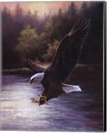 Eagle Prey Wall Poster