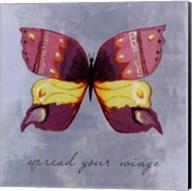 Spread your wings -mini Fine-Art Print