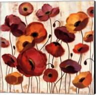 Sunrise Anemones Fine-Art Print