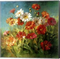Painted Daises Fine-Art Print