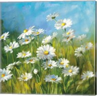 Summer Field II Fine-Art Print