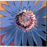 Sunshine Flower II Fine-Art Print