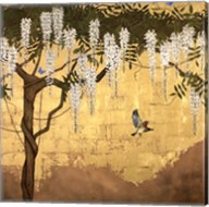 Wisteria with House Finch Fine-Art Print