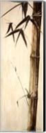 Sepia Guadua Bamboo II Fine-Art Print