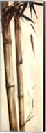 Sepia Guadua Bamboo I Fine-Art Print