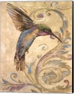Hummingbird I Fine-Art Print