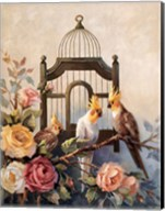 Cockatiel and Roses Fine-Art Print