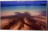 Palm Shadow Paradise Fine-Art Print