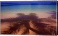 Palm Shadow Paradise Fine-Art Print