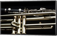 Close - up of a Clarinet and a Trumpet Fine-Art Print