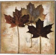 Natural Leaves III Fine-Art Print