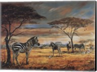 Zebras on the Plains Fine-Art Print