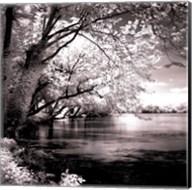 Spring On The River Square I - mini Fine-Art Print