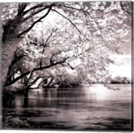 Spring On The River Square I - mini Fine-Art Print