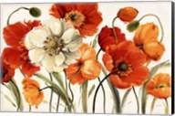 Poppies Melody Fine-Art Print