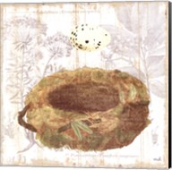 Botanical Nest I Fine-Art Print